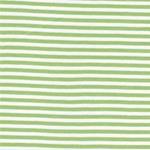 Hilco Bündchen COSTA Ringel grün weiß