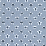Engl. Dekostoff SHOOTING STARS chambray