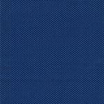 PETITE BASICS Punkte blue