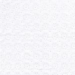 Hilco GRAZIELLA Lochstickerei weiß