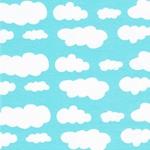 Swafing VICENTE Wolken helles mint