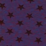 NADINE Slub Jersey Stern meliert blau ro