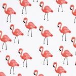 LES FLEURS Voile Flamingos creme