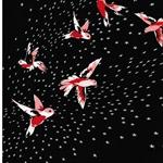 INA Baumwollsatin Kolibris schwarz