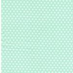 PLAYFUL CUTIES FLANNEL Dots mint