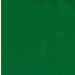 VANESSA Baumwolljersey grasgrün