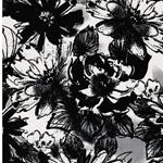 GRETA FLOWER Sweat creme schwarz