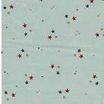 COLORFULSTARS Feincord Sterne mint