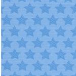 STARS & STRIPES Jersey Sterne hellblau