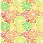 SUMMER FUN Jersey Zitrusfruchtscheiben