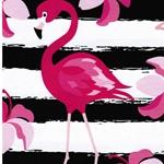 LUKE Jersey Flamingo groß schwarz pink