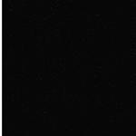 Silberdruck Glitzer-Viskosejersey schwar