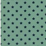 PINSTARS Jersey mintgrün jeansblau
