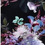 MANDY Jersey Blumensträuße navy bunt
