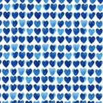NEPTUNUS Jersey Herzen weiß blau