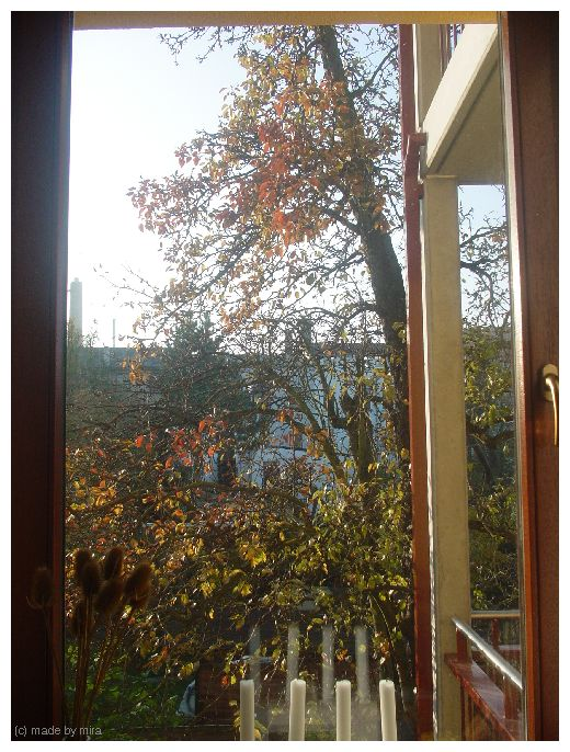 Was für ein schöner Herbst... 1