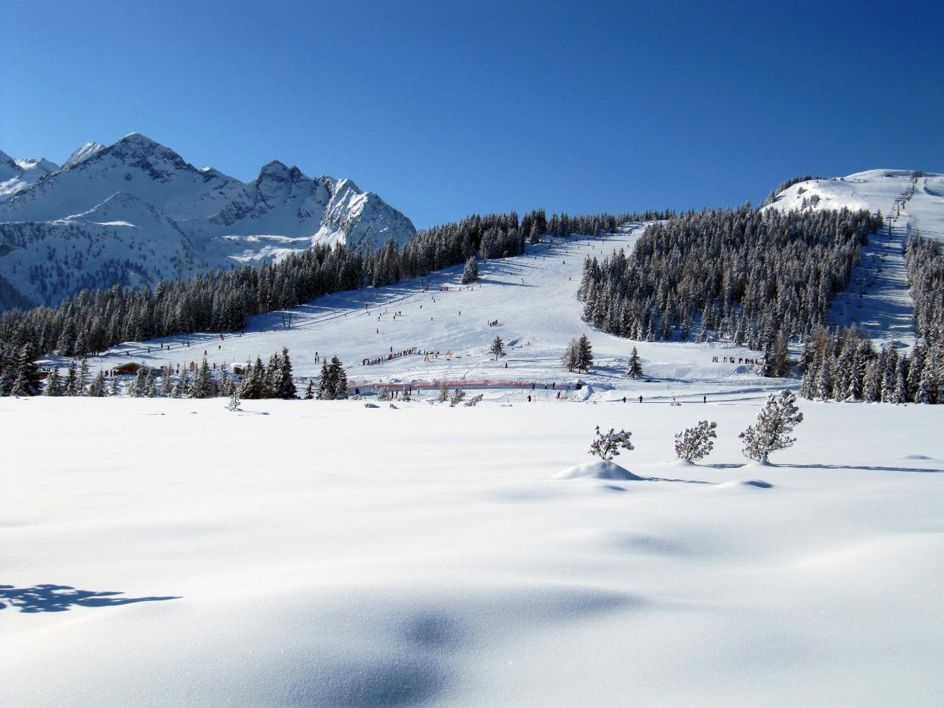 Österreich 2012 13