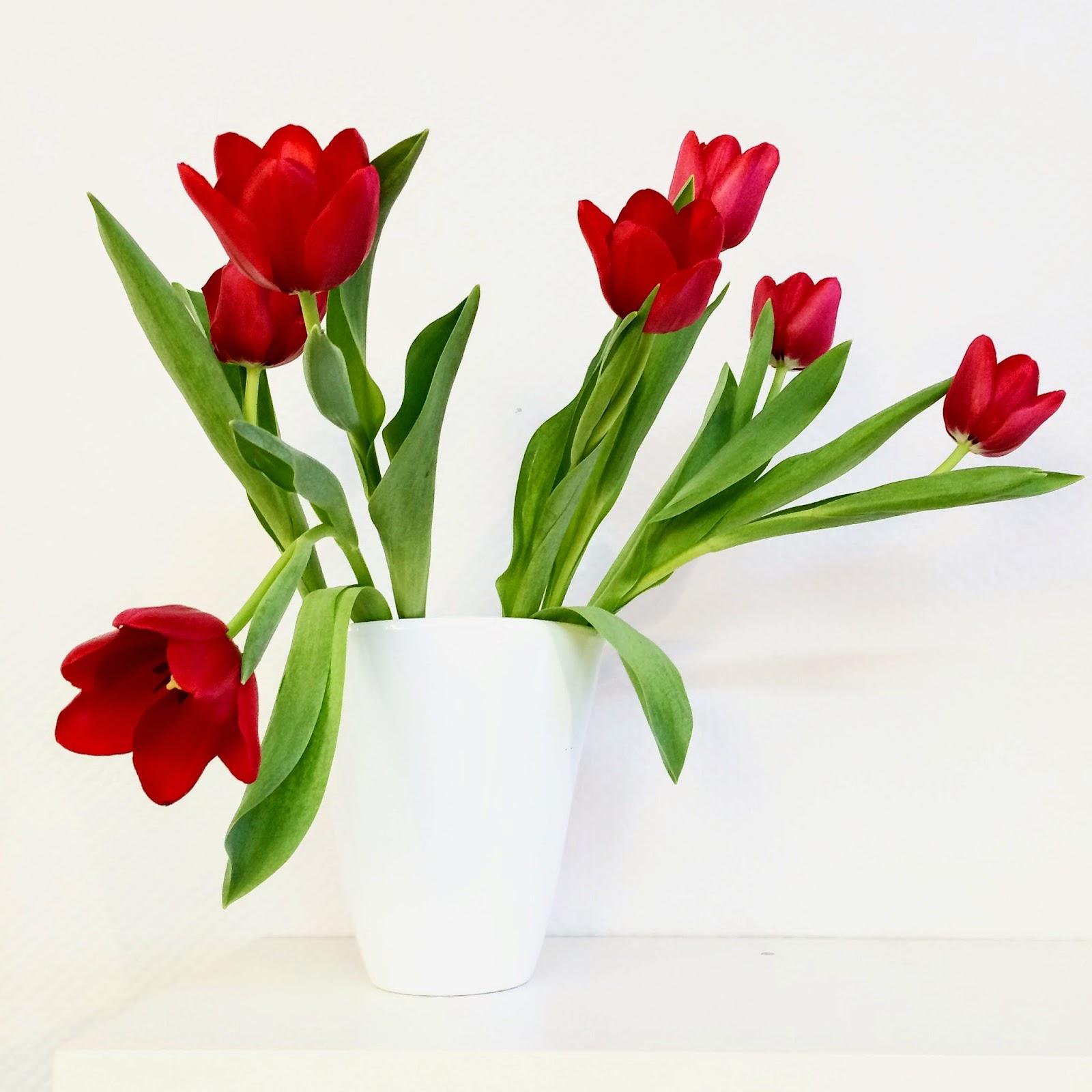 Ein Hauch von Frühling in unseren Läden! 1